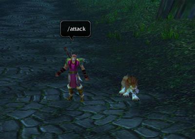 Slash Команды в WoW, World of Warcraft